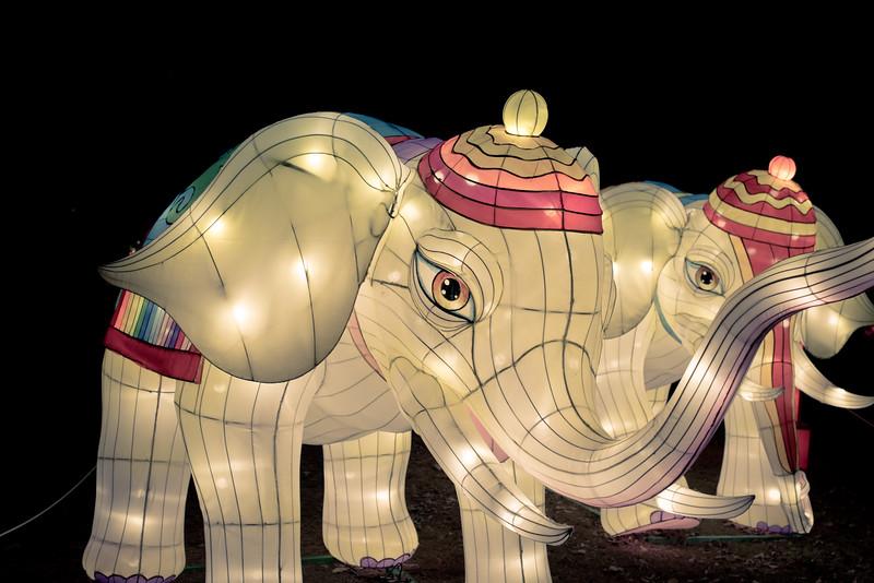 Chinese Lantern Festival-5289.jpg