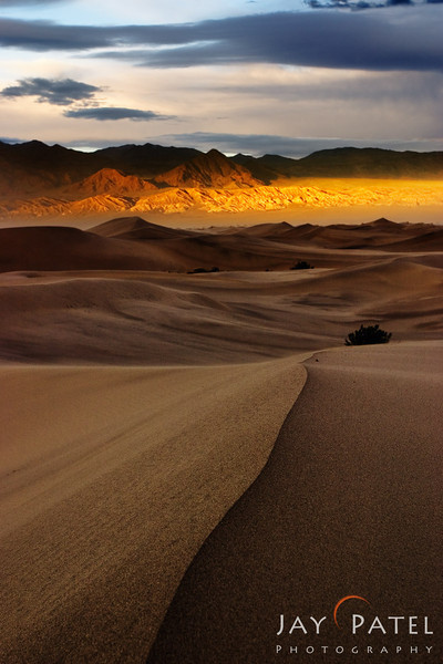 Mesquite Dunes, Death Valley National Park, California (CA), USA