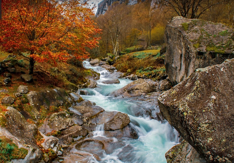 Calnègia river in autumn, an explosion of colors. Source: google Maps