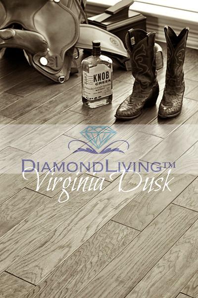 Diamond Living - Room Scene