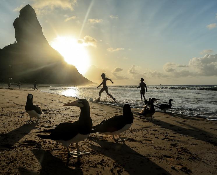 Conceição Beach, Fernando de Noronha, Pernambuco - Brasil