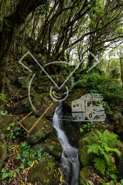 Beautiful landscape stream waterfall through the forest walking up to the Poço Ribeira do Ferreiro waterfalls and Lagoa dos Patos at Fajã Grande, Alagoinha on the fairy tale island of Ilha das Flores of the Azores