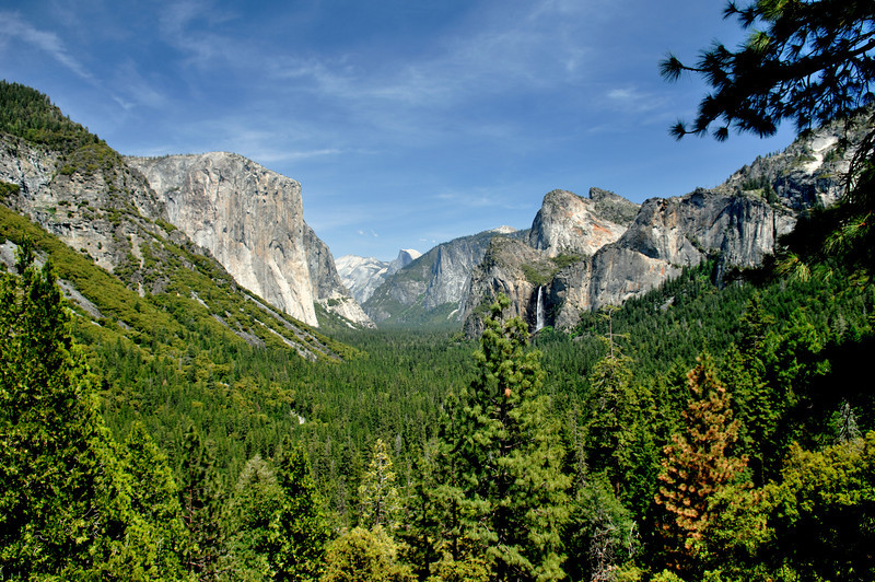 Yosemite Valley, Yosemite National Park,Ca