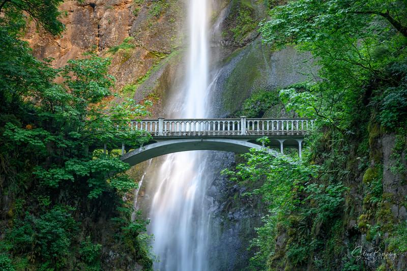 Multnomah Falls V