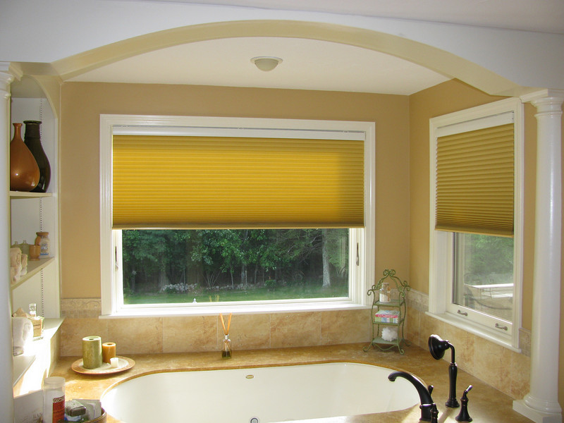 Duette Motorized Shades