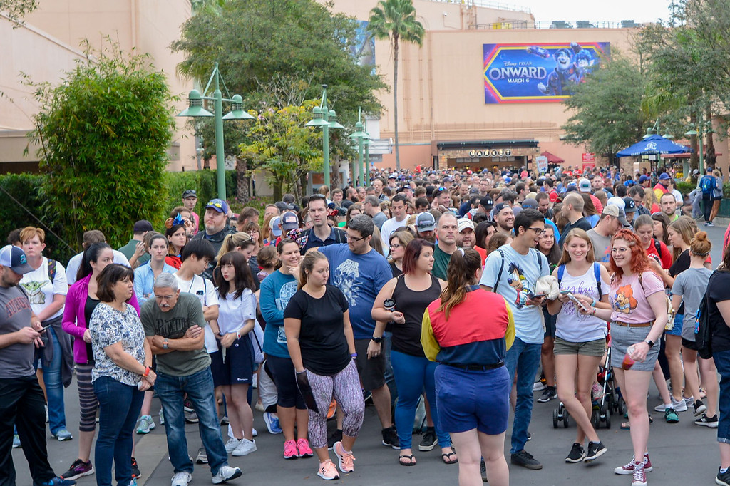 DIsney's Hollywood Studios Crowds