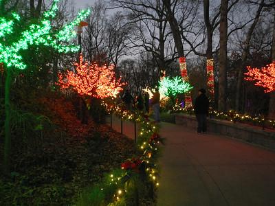 12-21 - Atlanta Botanical Garden Lights - Atlanta, GA