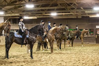 NTRA-Fall-Horse-Show-2013