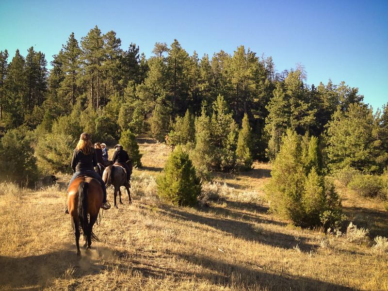 horseback start 4.jpg