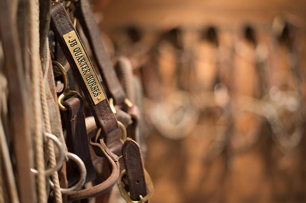 JB Quarter Horses 2015
