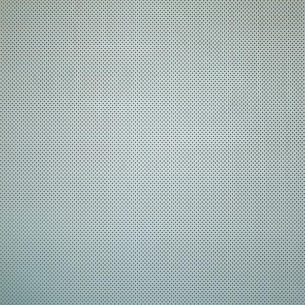 BH5A0240.jpg