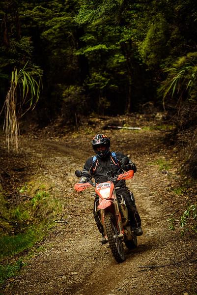 2019 KTM New Zealand Adventure Rallye (1335).jpg
