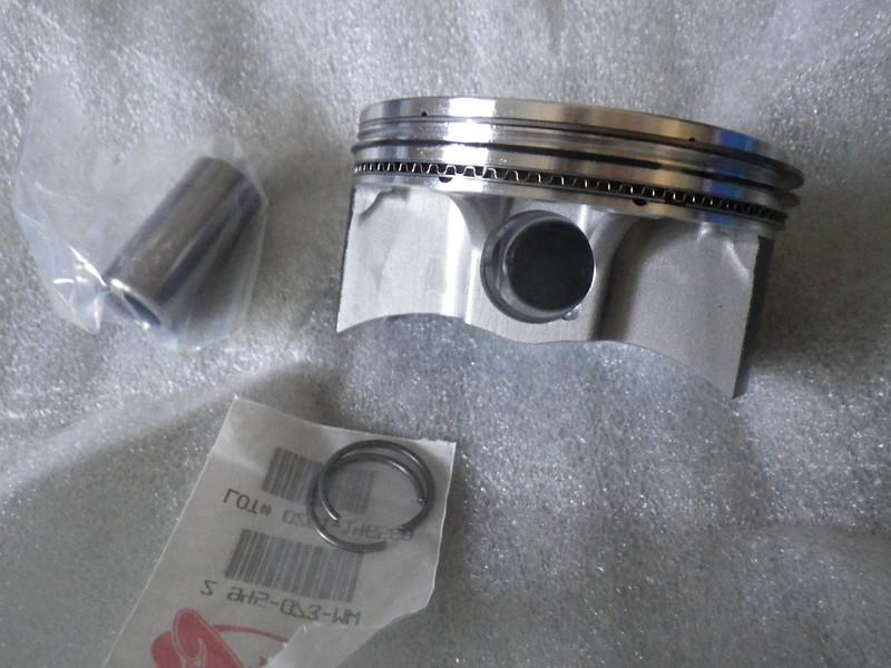 IMGP4560.JPG