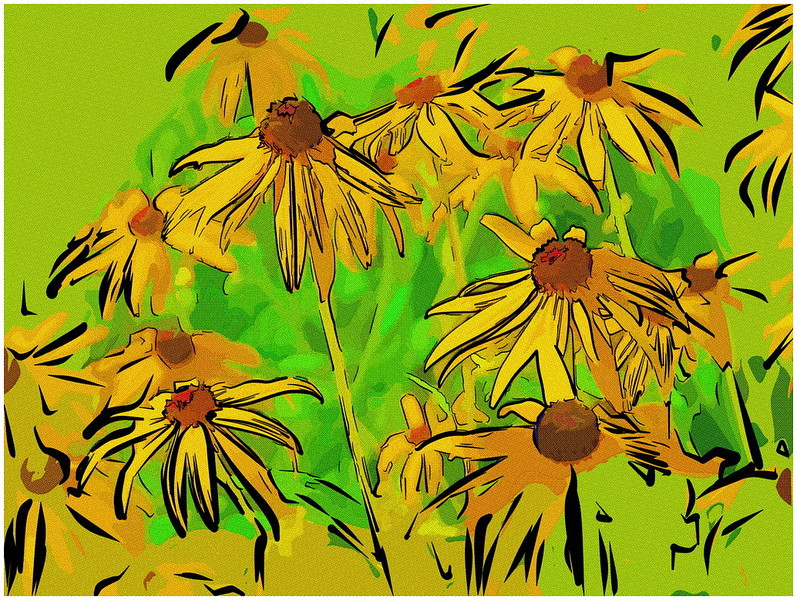Daisies Collage_resize.jpg