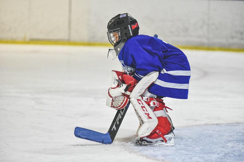 Leafs-117.jpg