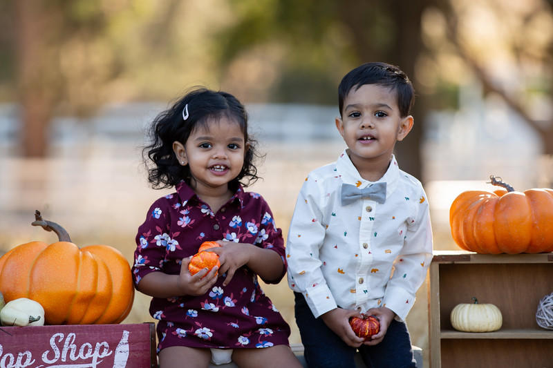 Patel Family Mini Session-12.jpg