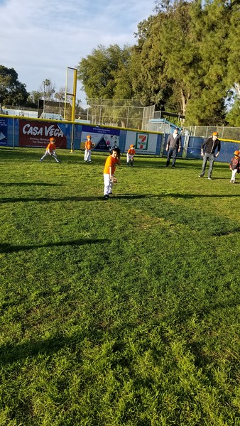 Tee Ball Division 2019