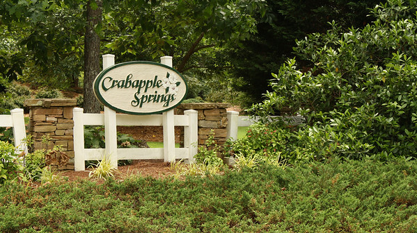 Crabapple Springs Woodstock GA