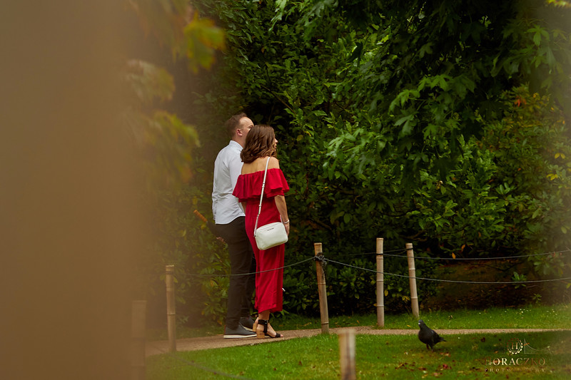 London-Secret-proposal-photographer