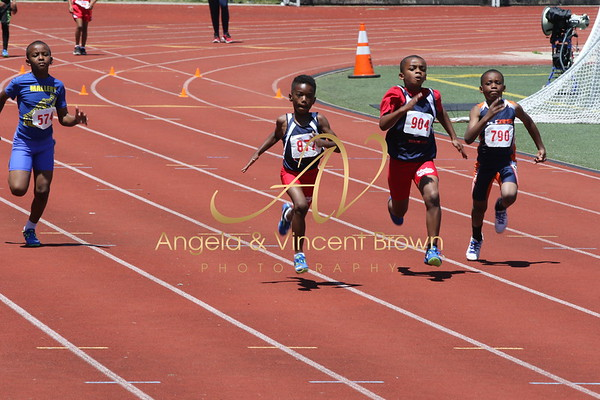 Champs: 8 & Under Boys 100M Trials