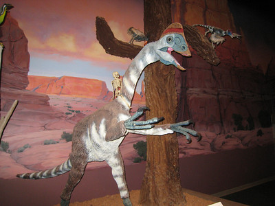 Dinosaur Park 10-2-09