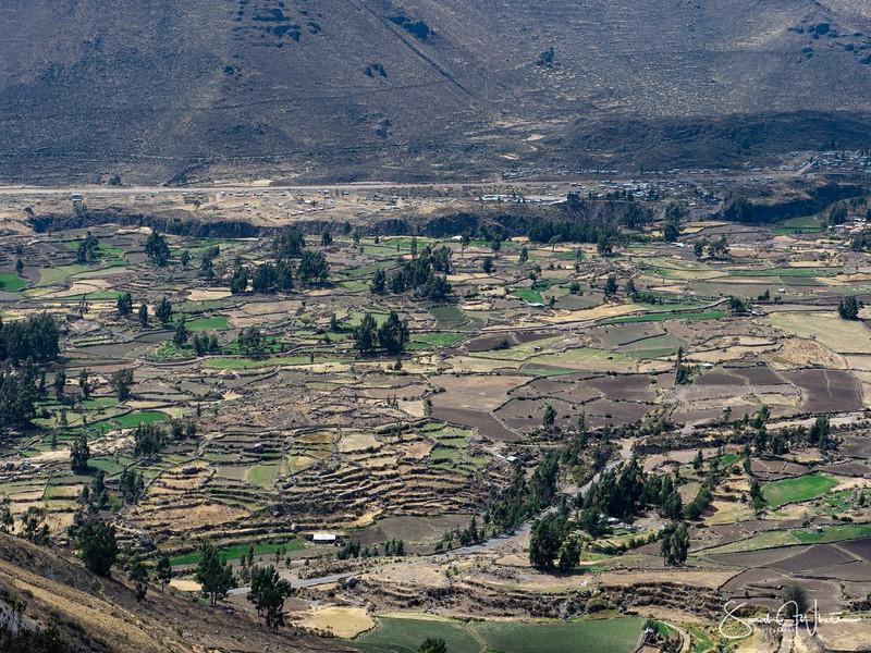 Peru-14102019-248.jpg