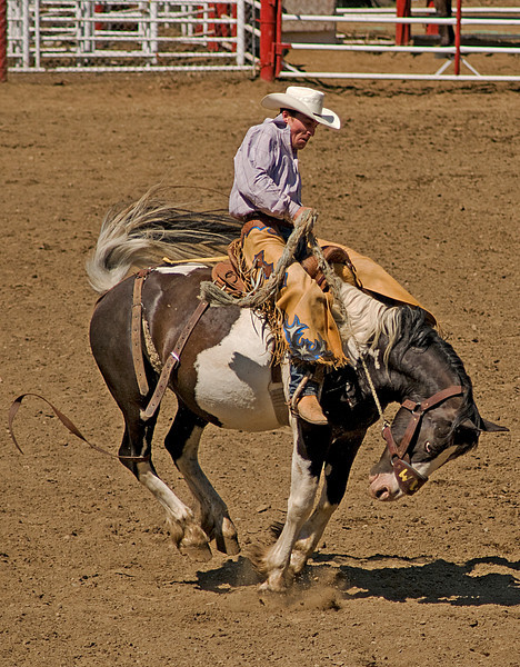 COOMBS RODEO-2009-3636A.jpg