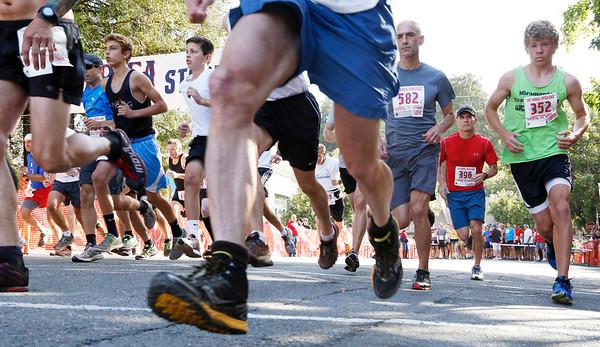 Dipsea Race 2014