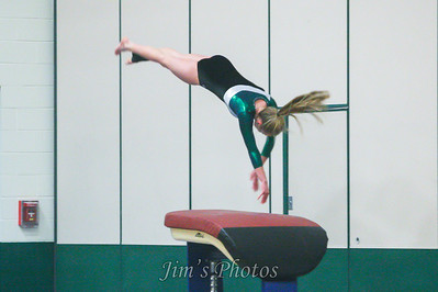 Madison Memorial Gymnastics - Jan 09, 2014