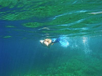 BVI Guana Island Monkey Point Snorkel with JVD Scuba