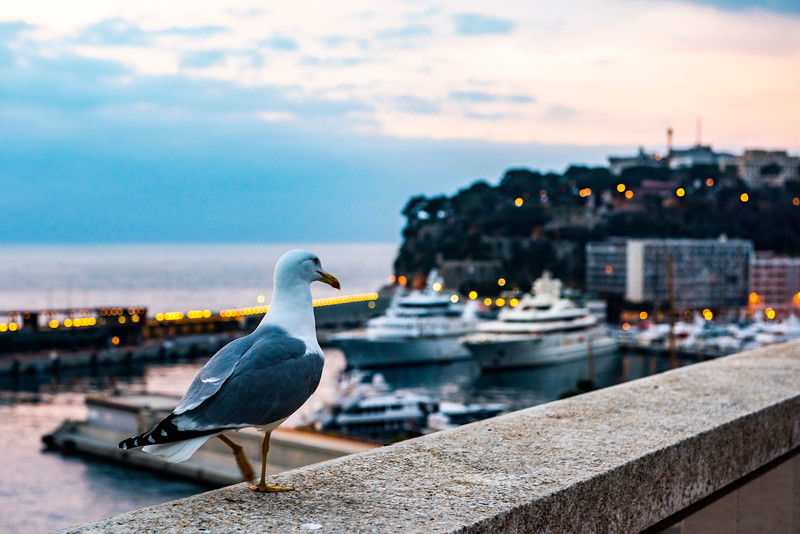 Fairmont Monte Carlo-6918.jpg