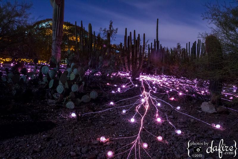 2015-2016: Bruce Munro: Sonoran Light
