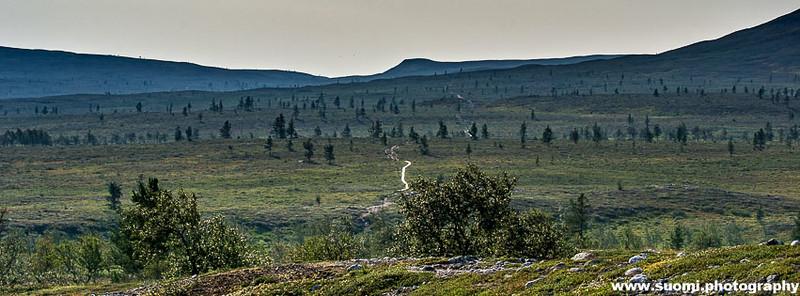 SuomiPhotography-7.jpg
