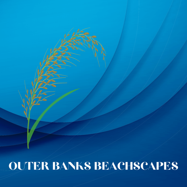 OBX Beachscapes Logo2.png