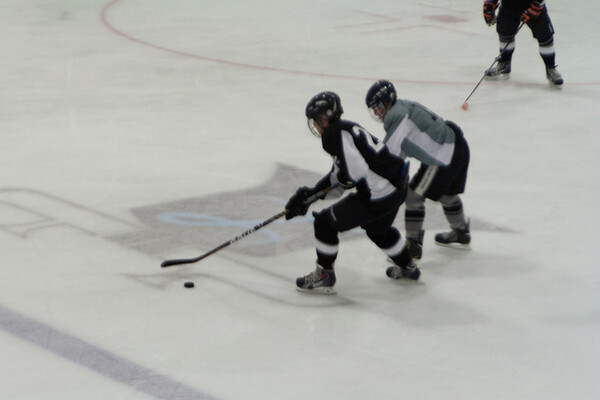 Whalers at Wolves 5-15-2014