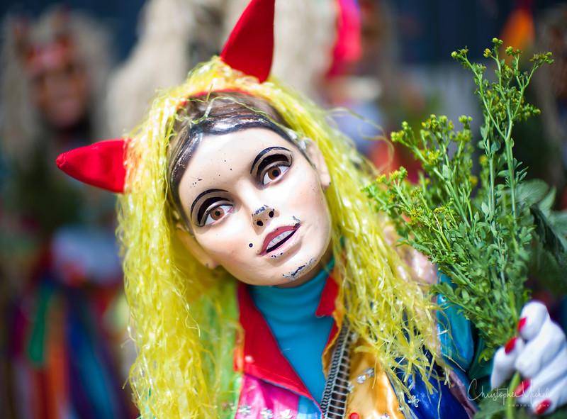 20120327_cuzco2m9_0834.jpg