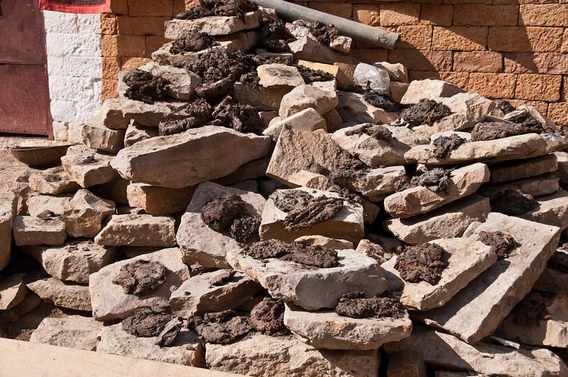 POW Day 5-_DSC3410- Jaisalmer.jpg