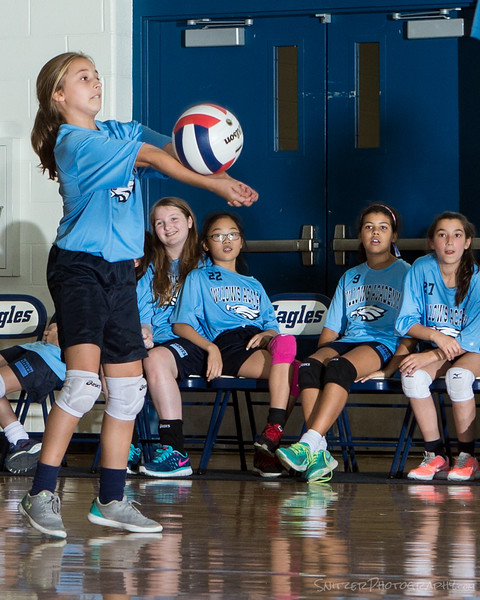 willows middle school volleyball 2017-877.jpg