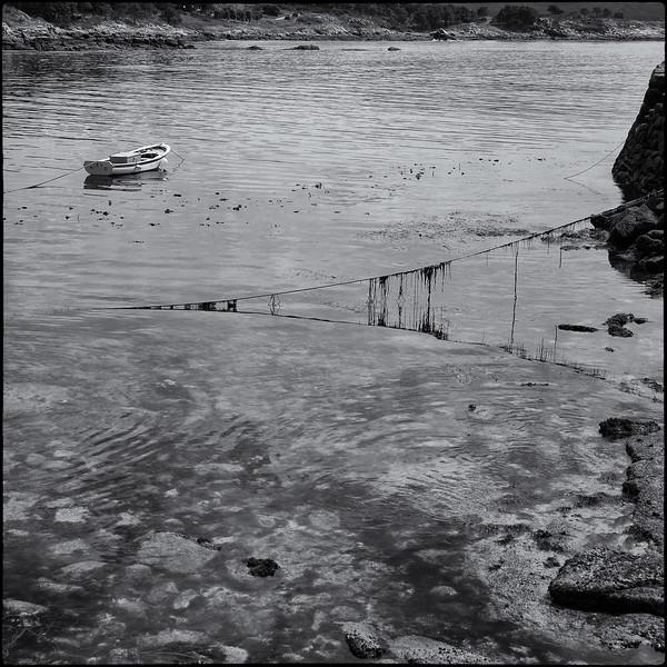 galicia-swim-5.jpg