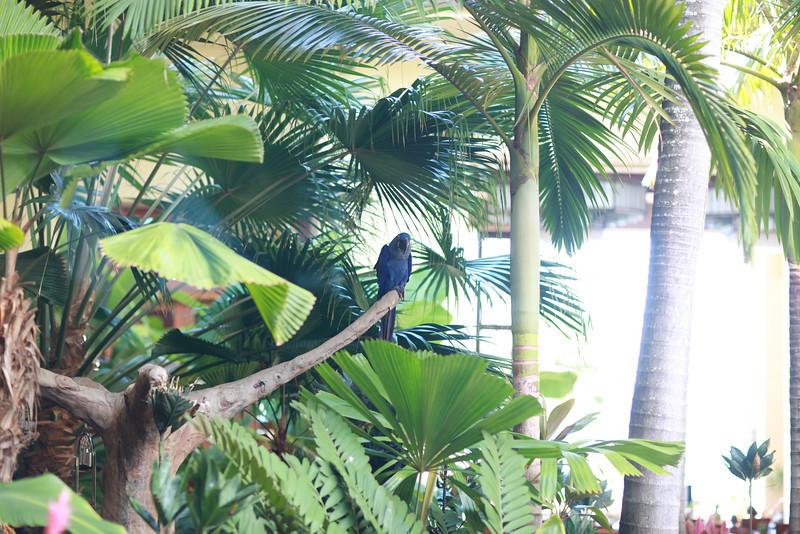 Kauai_D5_AM 216.jpg