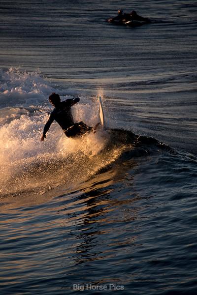 venice surf 2.jpg