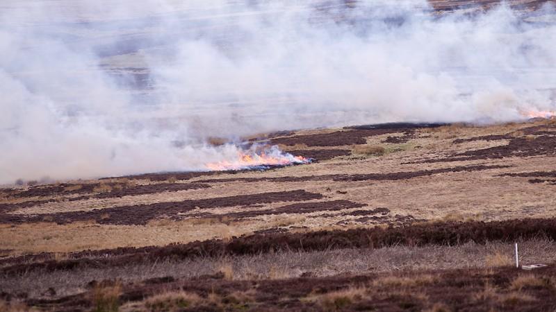 fire 1219.jpg