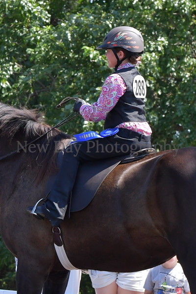40. Academy Equitation WT on Lead