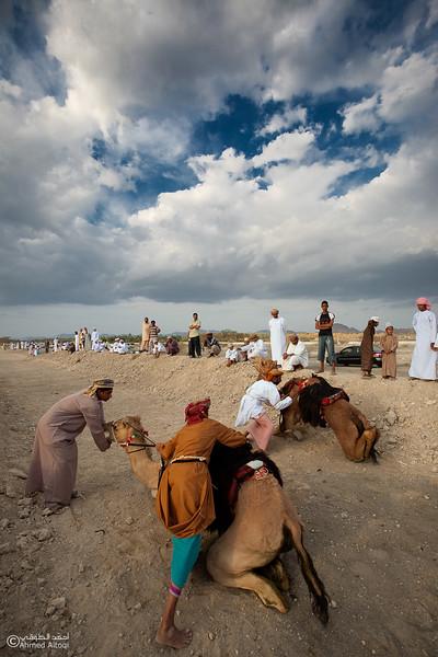 Camel Race  (16).jpg