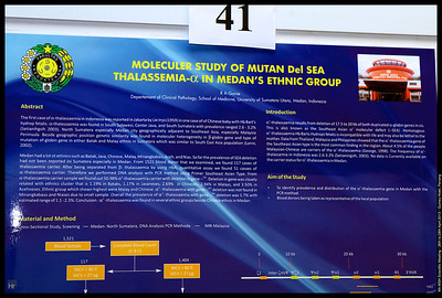 MSH 2013 Posters