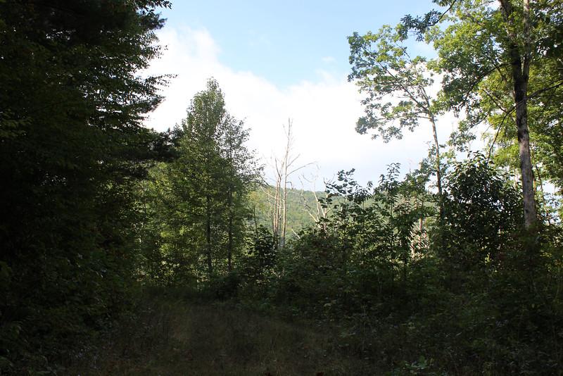 Buck Creek 069.jpg