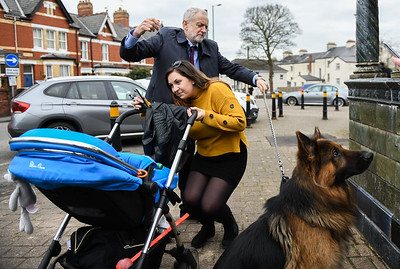 Jeremy Corbyn and the alsatian dog on the streets of Newport South Wales.
