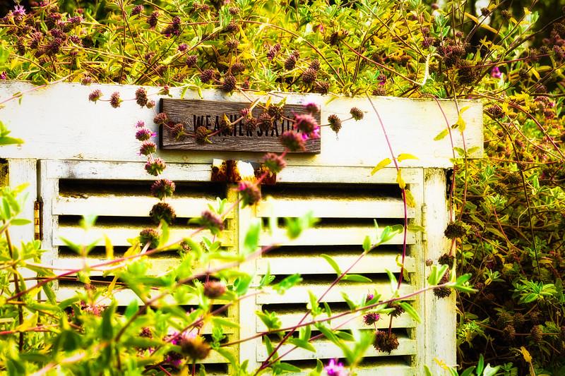 Weather Station, U. C. Santa Cruz Arboretum, California, 2010