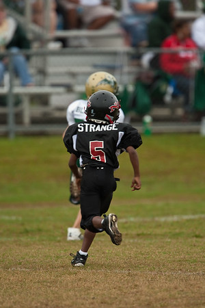 North Gwinnett Bulldogs 2009