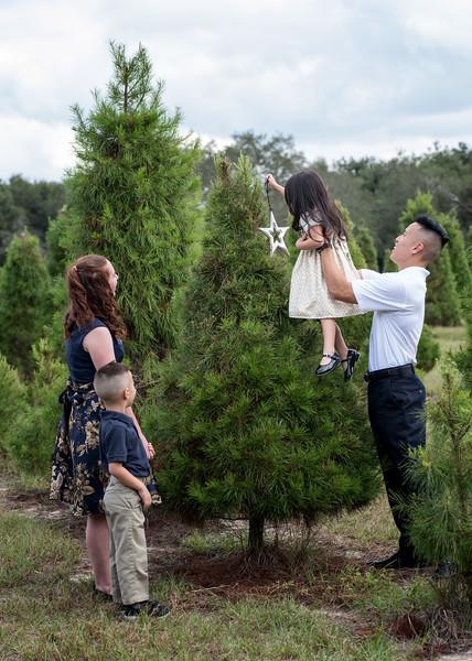 Phan family sin star.jpg
